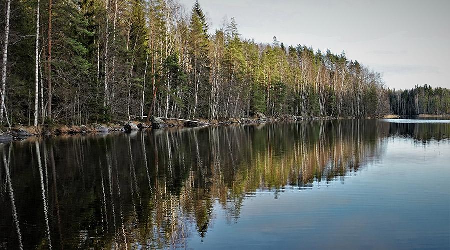 Irja Hannonen nature trail