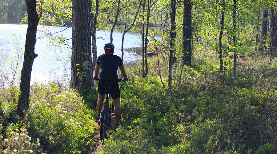 Mäntyharju-Repovesi trails